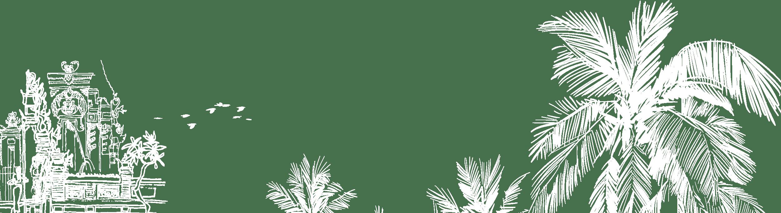 palmier voyage